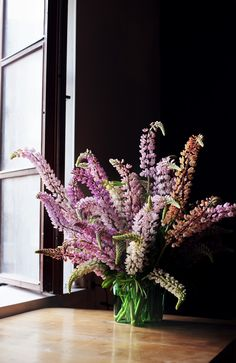 pink lupins