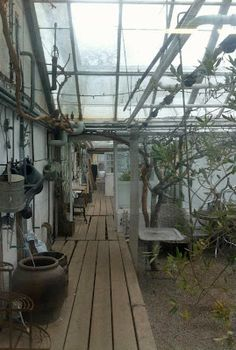 attached greenhouse.. and love that pottery rain barrel idea..