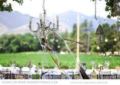 natural-outdoor-wedding-franschhoek_034