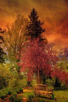 Reader Rock Garden, Calgary, Alberta, Canada autumn garden, canada, bench, tree, color, gardens, place, flowers garden, rocks