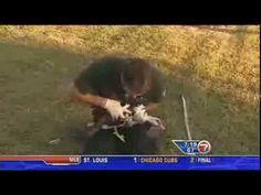 Muscovy duck survives arrow attack in Florida