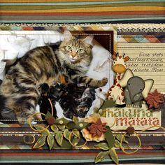 Template LovingLayersby LissykayDesign http://www.godigitalscrapbooking.com/shop/index.php?main_page=product_dnld_info&cPath=29_308&products_id=21612&zenid=ab62860f64775890beb3f48e14503abf         Scrapkit Safari by CajunDivaScraps http://daisiesanddimples.com/index.php?main_page=product_info&cPath=8_200&products_id=4922 Photo by kpmelly