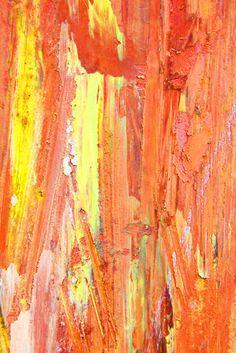 color palettes, orang