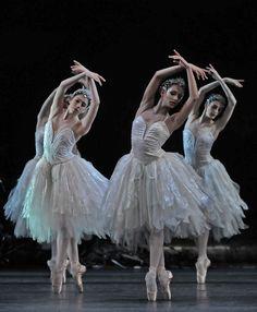 Swan Lake - Royal Ballet    photo by (c) Dave Morgan
