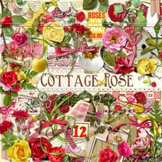 A beautiful rose themed scrapbook collection from Raspberry Road Designs.