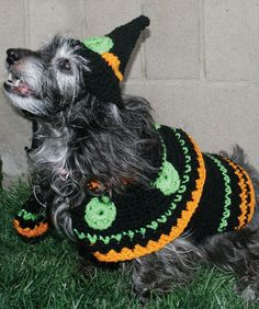 Dog's Crochet Witch Costume Free Crochet Pattern from Red Heart Yarns