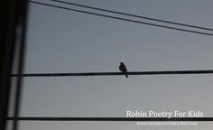 Celebrate Robins with music and poetry for kids - from www.montessorimischief.com
