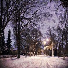 Edmonton, AB Winter Morning