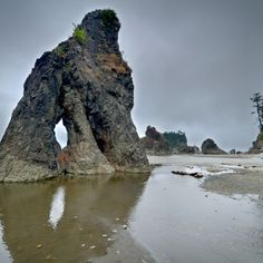Ruby beach, Olympic peninsula