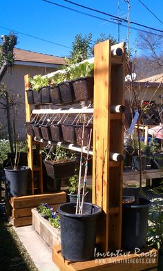 Vertical Garden rack from old fence wood, and a previously used swing set.