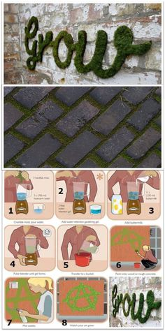 Moss Wall Art instructions. Other recipe: Put in blender: one can of cheap beer (or 1 1/2 cups buttermilk), a few handfuls of moss, one teaspoon of sugar. Paint on wall and mist daily until it grows.