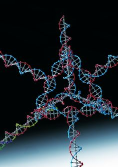 Researchers successfully used this nanoparticle, made from several strands of DNA and RNA, to turn off a gene in tumor cells.   Image: Hyukjin Lee and Ung Hee Lee