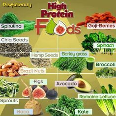 HIGH PROTEIN NON-ANIMAL FOODS