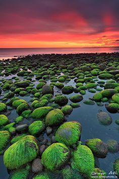 Green Rocks - Hvaleyri in Hafnarfjörður, Iceland by orvaratli, via Flickr