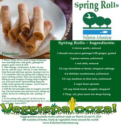 Thai Spring Rolls #recipe. Vegetable ingredients can be grown from a home garden for the real #foodie.  Vegetable seedlings available at Veggiepalooza! http://fullertonarboretum.org/ps_veggiePalooza.php