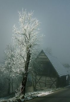 Ice Storm On The Barn