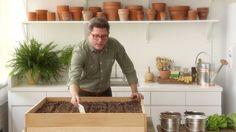 plant, lettuc varieti, lettuc garden, lettuce, grow, learn, gardens, rais bed, martha stewart