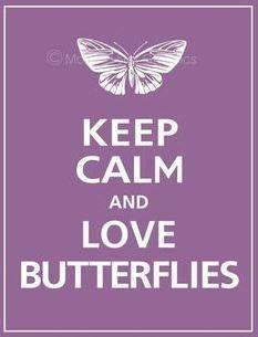 <3 butterflies