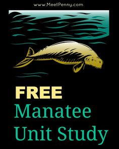 Download a FREE manatee unit study and enter for a chance to win a complete 4-week wildlife study and a $50 gift certificate.