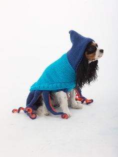 Turn your four-legged friend into an 8-legged one with this knitted Octopus costume for Halloween.  Check out our Octopus poncho for kids for an adorable photo opportunity.