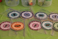 Wild Kratts Party DIY Decorations & Activities