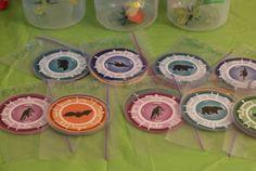 Wild Kratts Party DIY Decorations & Activities