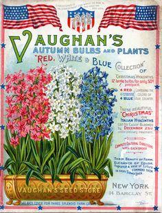 Vaughan's Seed Store, Autumn Bulbs and Plants, 1898 (via).