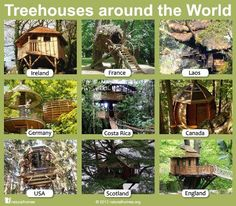 Treehouses around the world!