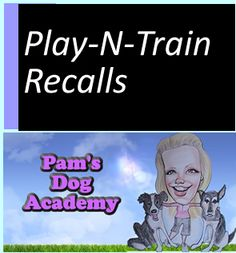 DVD: Play-N-Train Recalls