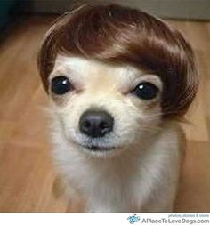 """I wouldn't have thought to cast Carey Mulligan in """"Gatsby,"""" but she really does look the part. At least without my glasses."""