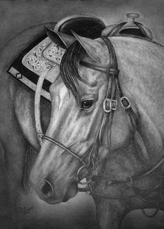 Horse drawing by Sara Jean  www.artbysarajean