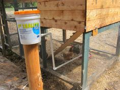 Chicken Coop Waterer Bucket - good info in the comments too.