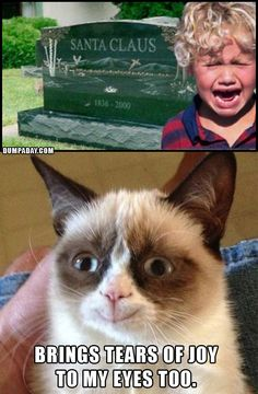 Hahahaha Christmas pics that make grumpy cat happy....silly photo shop