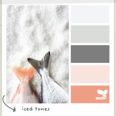 Love the dark grey and the salmon type color...walls are gray with salmon accent colors on bed and stuff