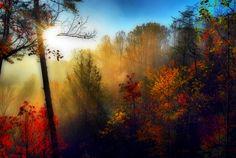 Morning in the Smokey Mountains