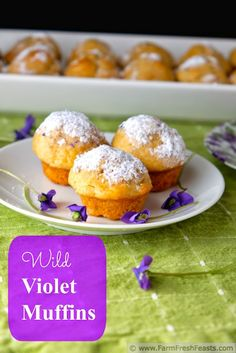 Wild Violet Muffins with Wild Violet Sugar from Farm Fresh Feasts