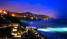 terrac, dinner, hotel california, laguna beach, beaches, dream, orange county, at the beach, place