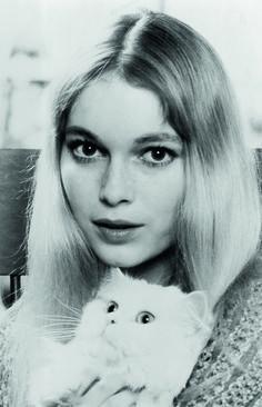 Mia Farrow, 1965. Ph