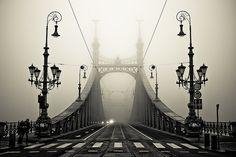 The Bridge. Gellert, Budapest, Hungary