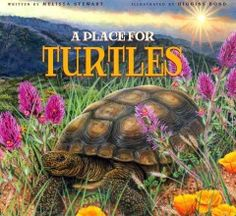 J 597.92 STE. Describing various examples, the author provides an intriguing look at turtles, at the ecosystems that support their survival, and at the efforts of some people to save them.