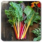 Organic Improved Rainbow Mix Chard- a favorite!