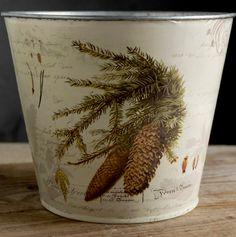 Pine Cone Buckets