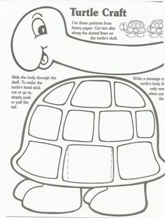 a turtle craft in which the head tucks into the shell!