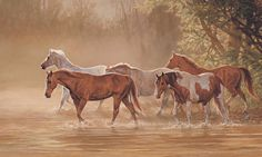 Horses and water