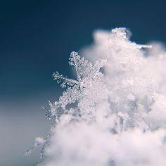 Snowflake Photography Wall Art  Macro Photo by DreamlikeDesign