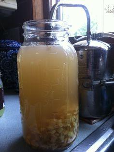 ferment ginger, drink, homemad gingeral, gingers, beverag, ginger ale recipe, ales, homemade ginger ale, ferment food