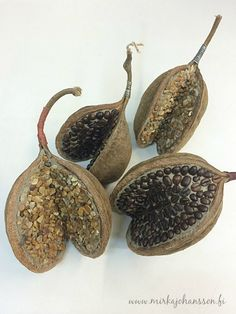 Stone cocos nut