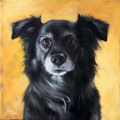 Pet Portraits. I want!