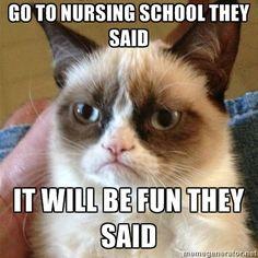 Grumpy Cat takes on nurses! #GrumpyCat #Memes #LOL #Nurses anim, funni stuff, laugh, grumpi cat, humor, quot, meme, grumpy cats, thing