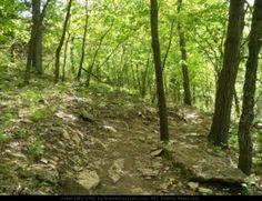 Best Hiking Trails and Walking Trails in Shawnee KS shawnee mission park trail | shawnee chiropractic #shawnee #chiropractor www.FulkChiropractic.com